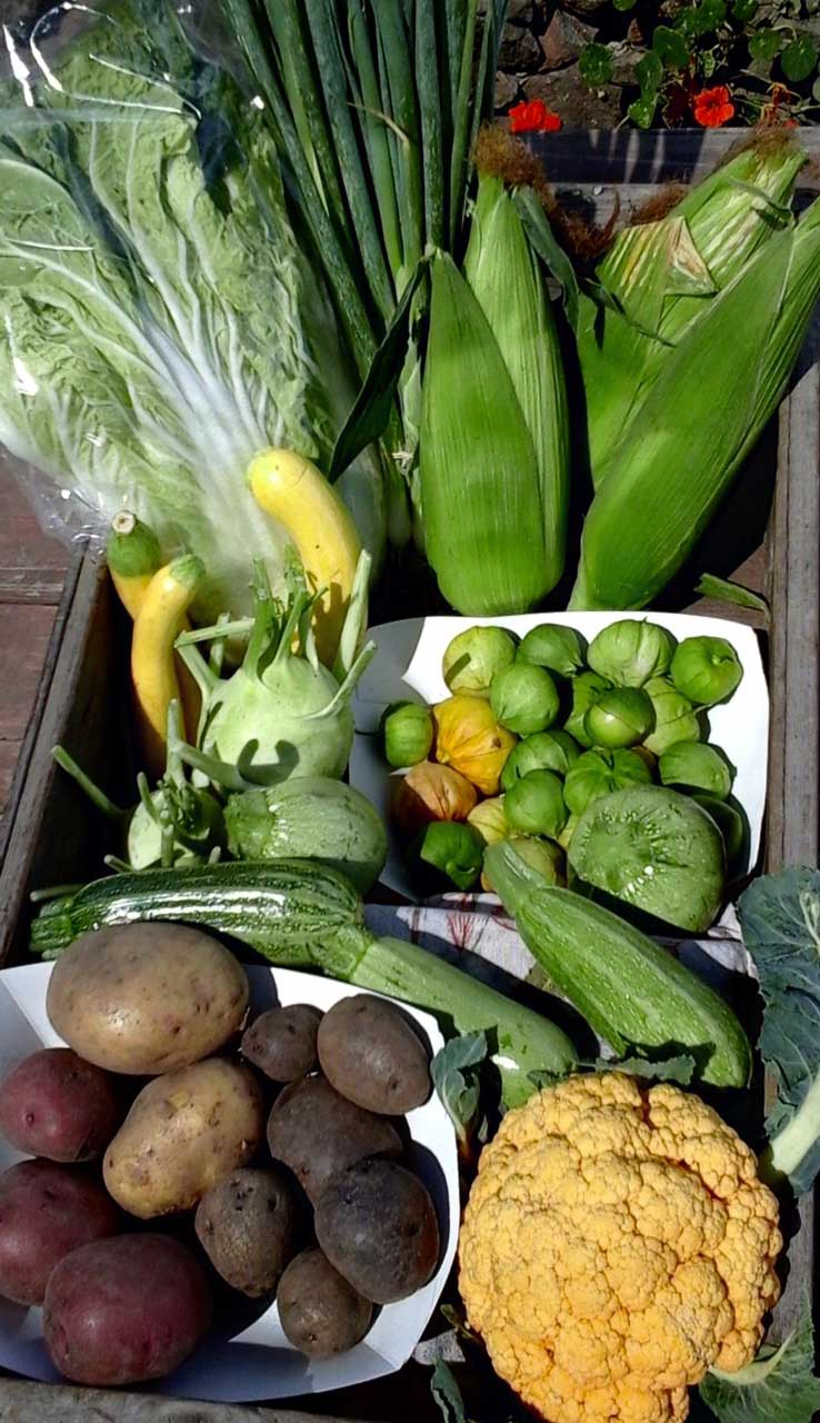 box of vegetables